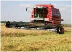 В Казахстане начали выпускать новый зерноуборочный комбайн